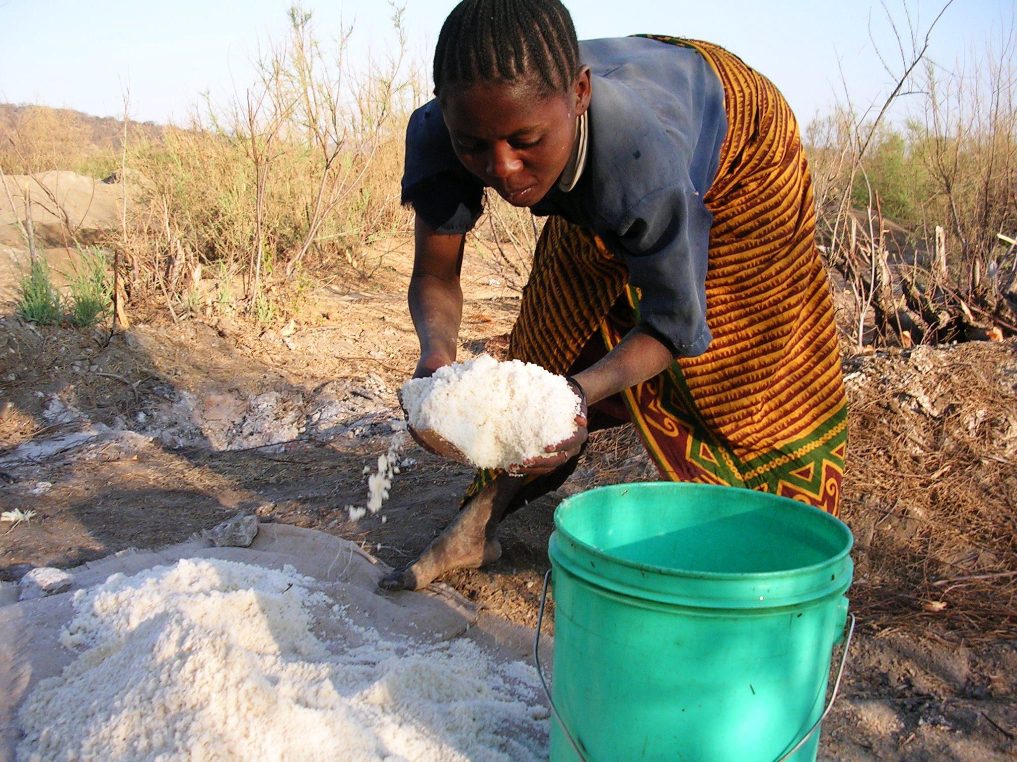 Produzione e vendita del sesamo nella regione di Dodoma ...